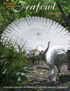 sbrm-peafowl-variants