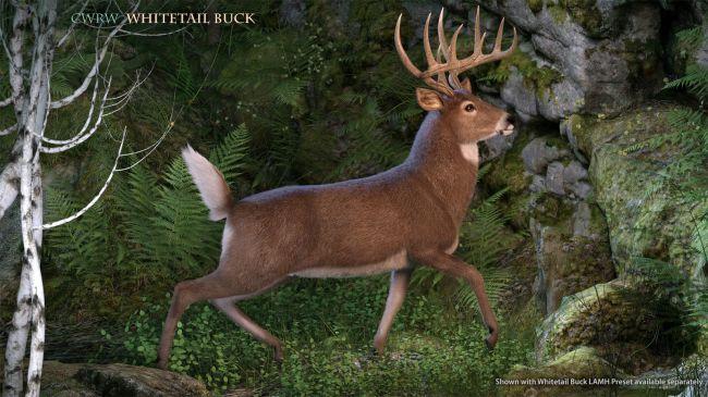 cwrw-whitetail-buck