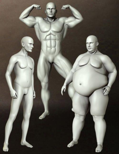 dusk's-body-shapes