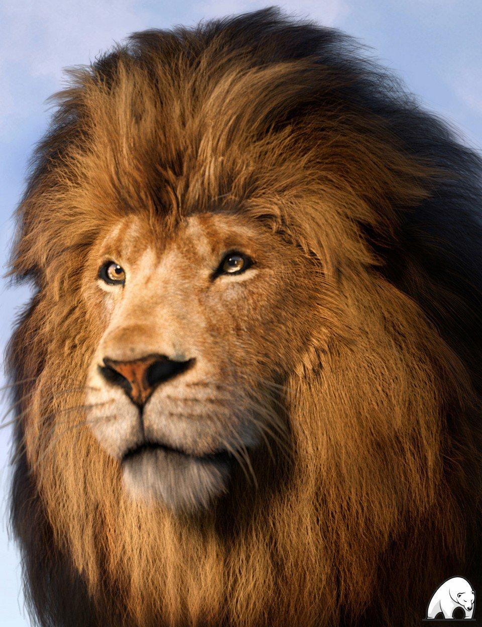 felidae-by-am-–-lion