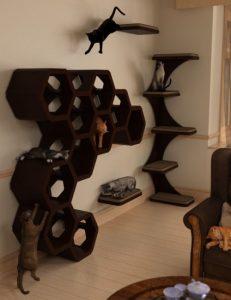 house-cattitude-iii-props