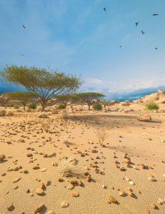 desert-depression