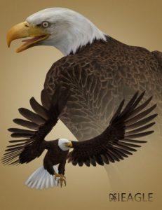 deepsea's-eagle