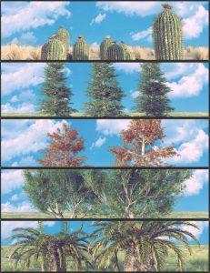 nature-plants-02