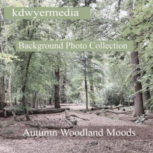 autumn-woodlands-moods