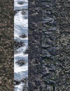 v176-iray-ground-textures-5
