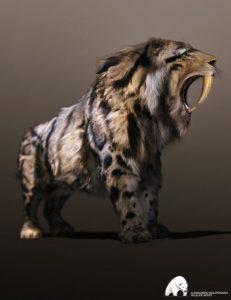 felidae-by-am-–-smilodon-populator